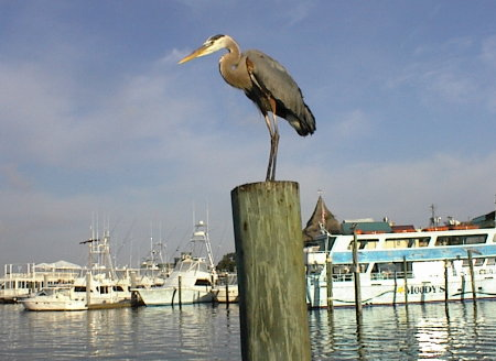 Best places to live in florida and retire for Best small towns to live in in florida